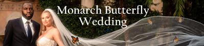 Monarch Butterflies for weddings